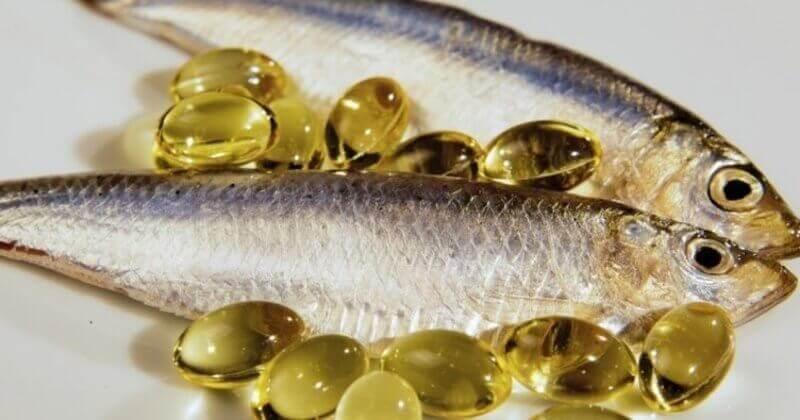 اهمیّت مصرف ماهی در پیشگیری از بیماریها
